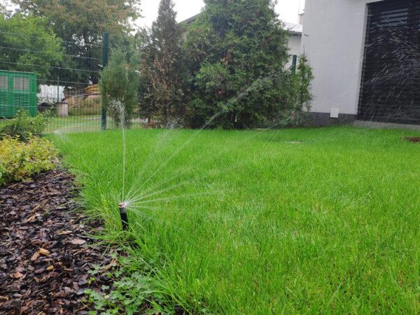 Správná zahrada